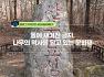 능이나 태실로 불이 번지는 것을 막기 위한 화소 표석과 출입 금지를 알린 금표비 :: 돌에 새겨진 글자, 나무의 역사를 담고 있는 문화재