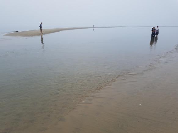 (개발) 바닷모래는 골재가 아니다.
